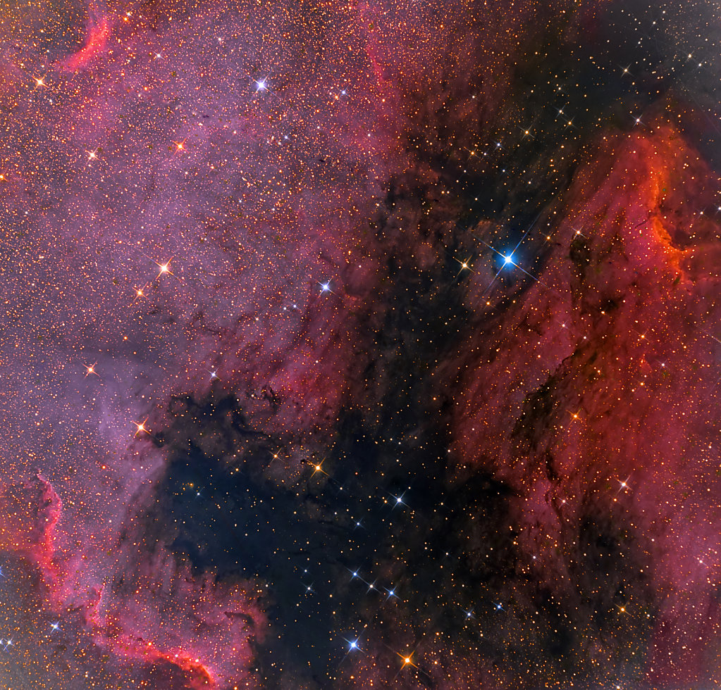 The Pelican and North America nebula